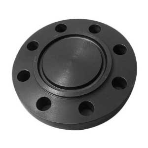 RTJ Flanges supplier in India