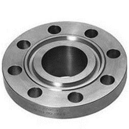ASTM A182 F317 Stainless Steel IBR Approved Flanges Supplier